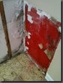 Mold_Behind_Cabinet