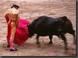 spain-madrid-bullfighter