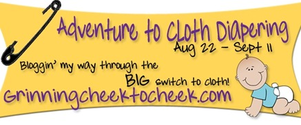Adventures-In-Cloth-Diapering-Banner2