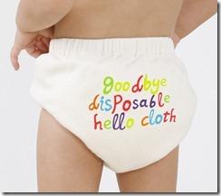 Goodbye disposable Hello Cloth bum (1)