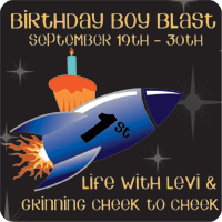 Birthday Boy Blast