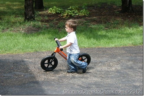 toddler with bike