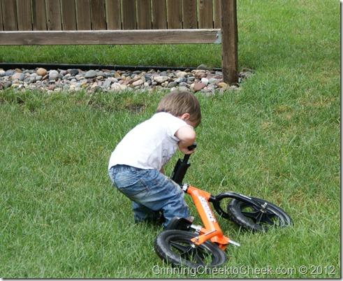 orange balance bike