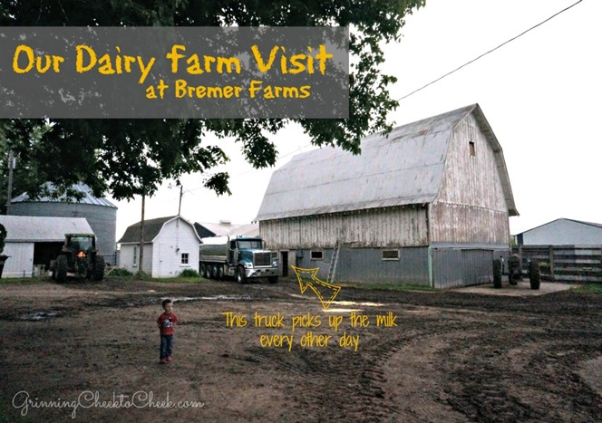 Dairy Farm Tour 1