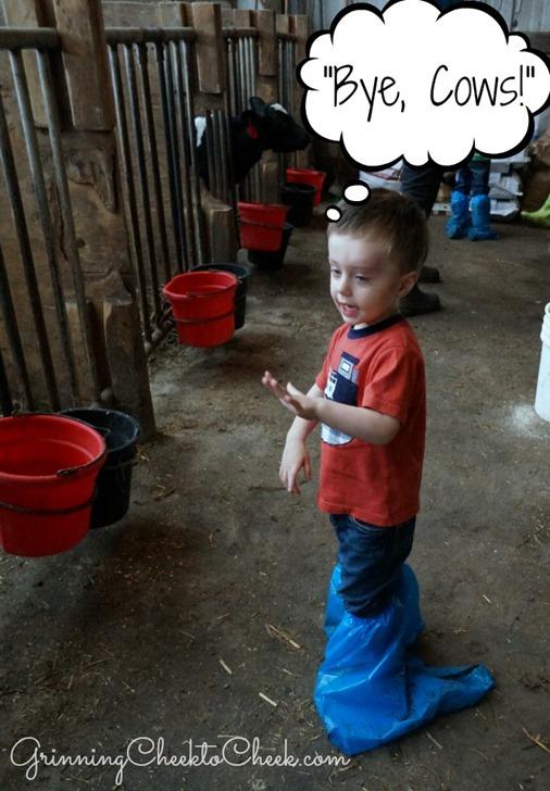 Dairy Farm Tour a