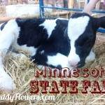 Blackberry Z10 goes to the State Fair #sponsored