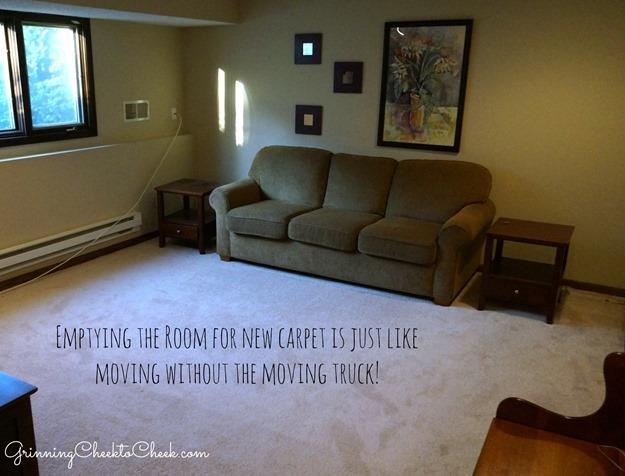 Loving Our New Tigressa Cherish Carpet From Carpet One