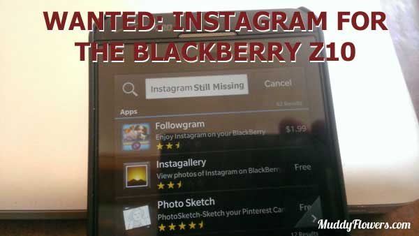 instagram-search-app-blackberry-review