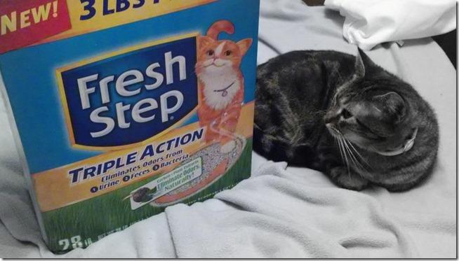Fresh Step Smart Kitty