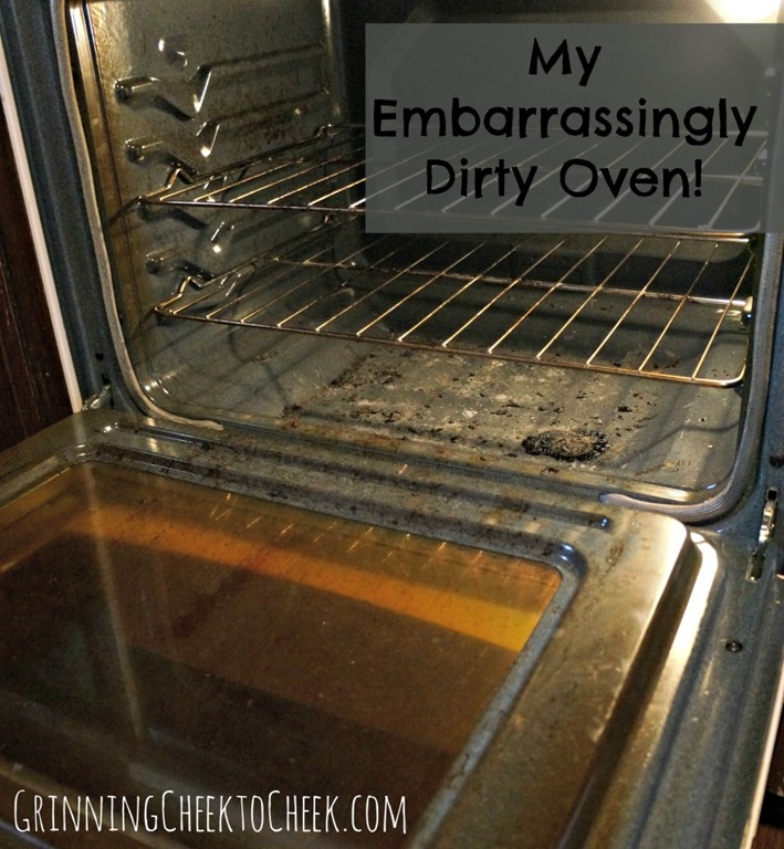 Clean the Oven Even my Worst Mess was Easy