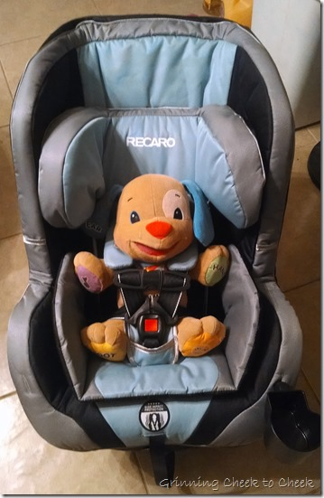 Recaro Performance Convertible Car Seat Infant