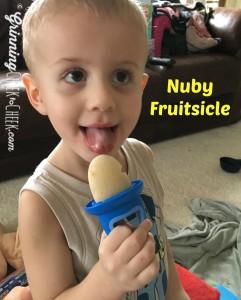 Garden Fresh Fruitsicles